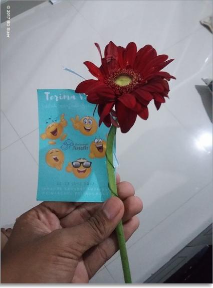 Bunga dari Azhar